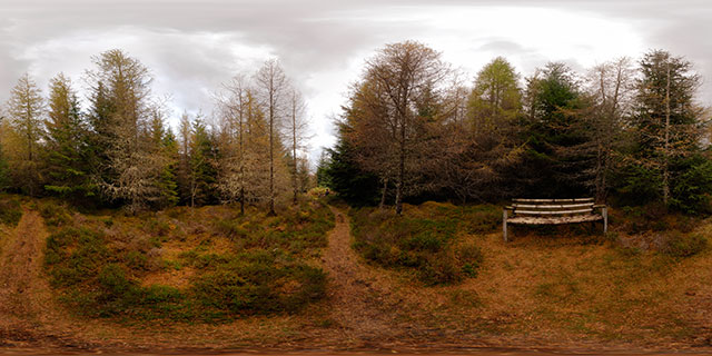 Allt na Criche Woodland in Autumn 3 360° Panorama