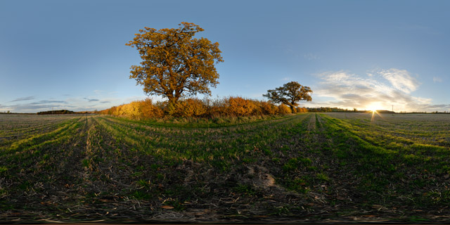 Field at sunset in Autumn 360° Panorama