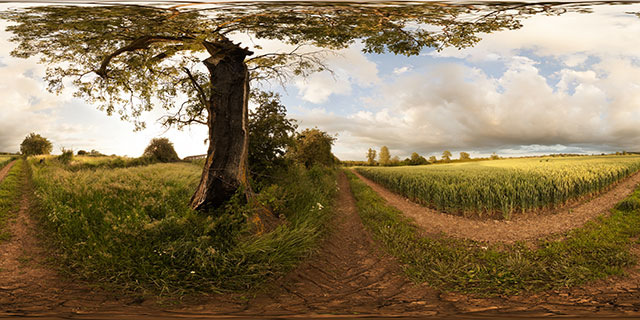 Field of green wheat near East Farndon 360° Panorama