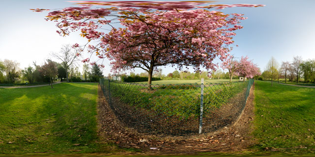Welland Park in Spring 7 360° Panorama